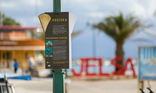PinaNobilis_EndangeredSpecies-Poster@Jelsa-IslandHvar_09.09.209-10